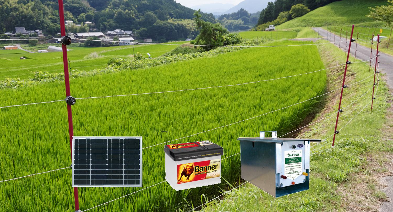 Electrificateur 12 Volts 10006